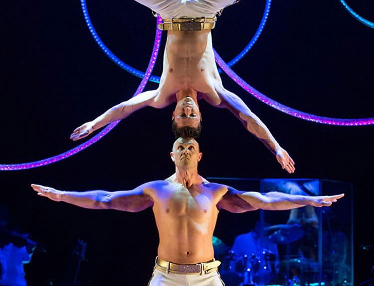 numero cirque noel toulouse